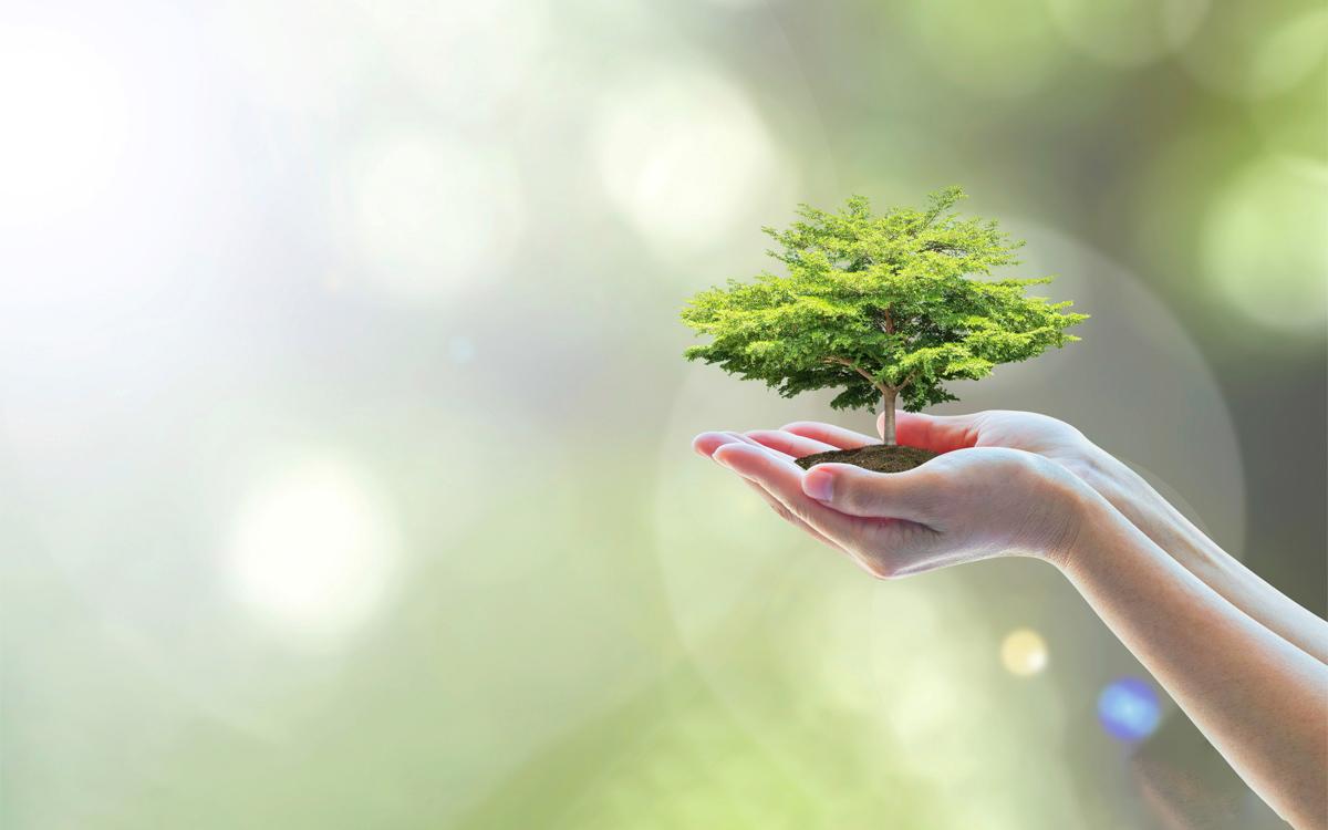社会・環境活動(CSR)